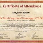 swiatowy-kongress-neurologii-maroco-2011